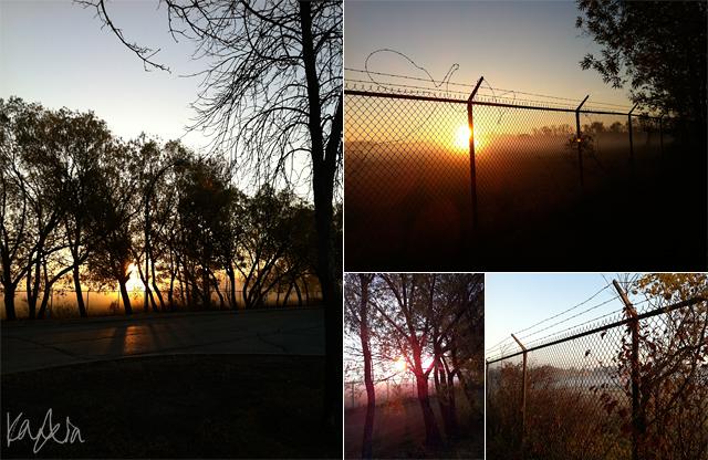 Blog: October morning