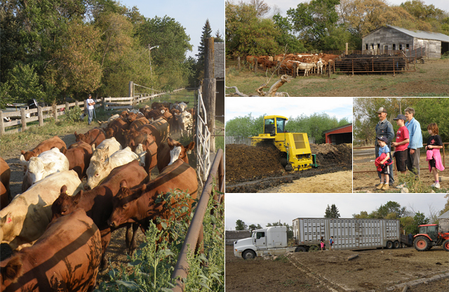 Blog: Farm Project - Sep1