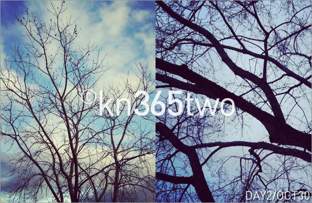 365two-Day2