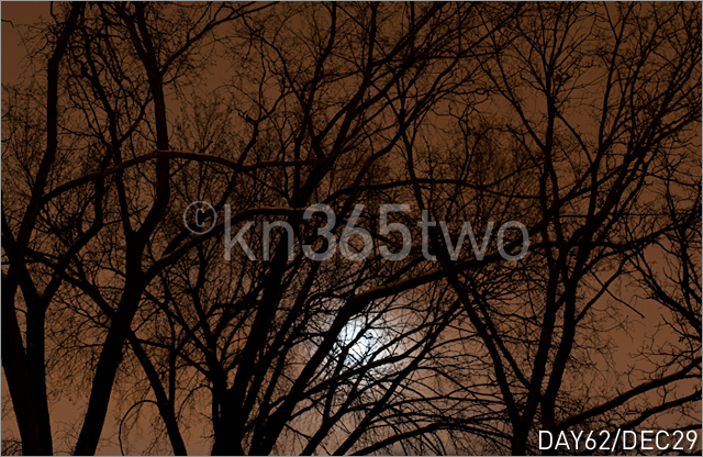 365two-Day62