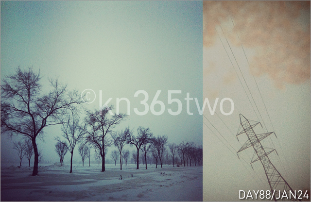 365two-Day88