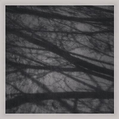 Instagram-Branches