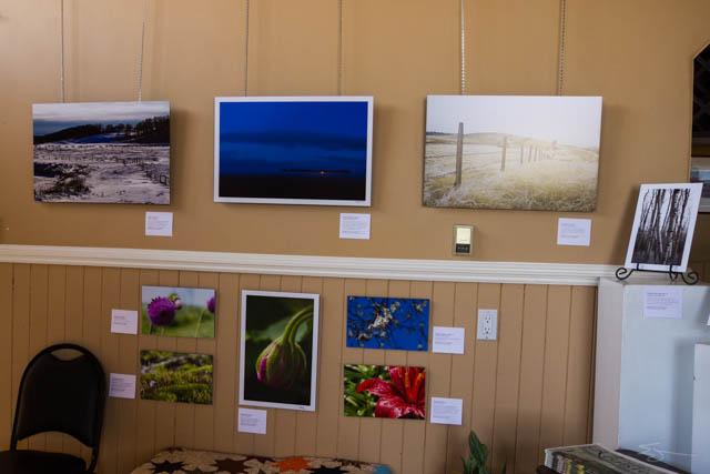 IMG_2263-galleryshow