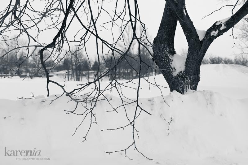 KN-Winter-2968