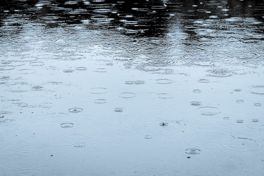 Raindrops, Karenia Niedzwiecki