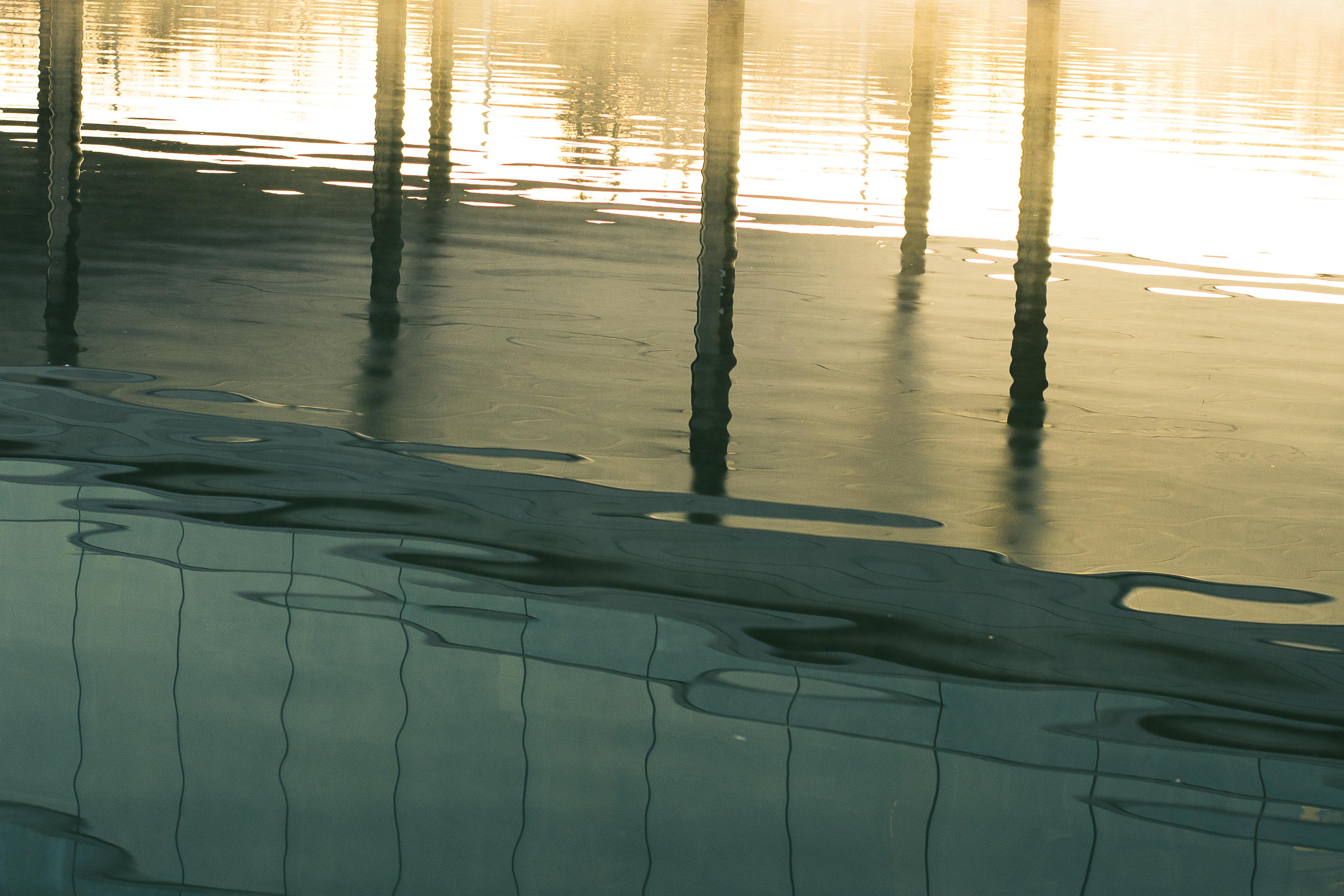 Warm reflections, Karenia Niedzwiecki